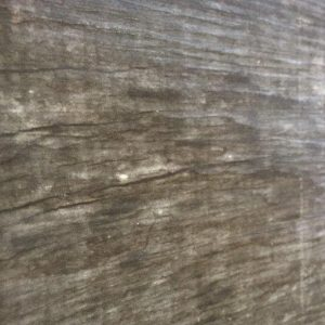 The Tile Studio Wood Look Range Forest Colour 5
